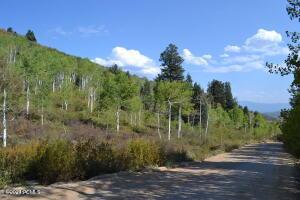 1766 Tollgate Canyon Road, Wanship, UT 84017