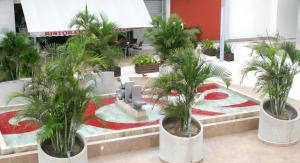 3 Av. Las Palmas local 7, Local 7 Plaza Alebrijes 3.14, Riviera Nayarit, NA