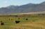 12631 Custer Road, May, ID 83253