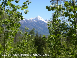 5990 SALMONFLY DR, Wilson, WY 83014