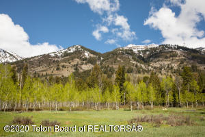 3635 COYOTE CREEK, Teton Village, WY 83025