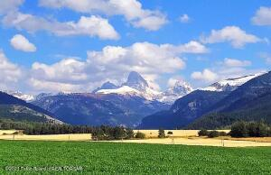 GRAND MOUNTAIN VIEW LN, Alta, WY 83414
