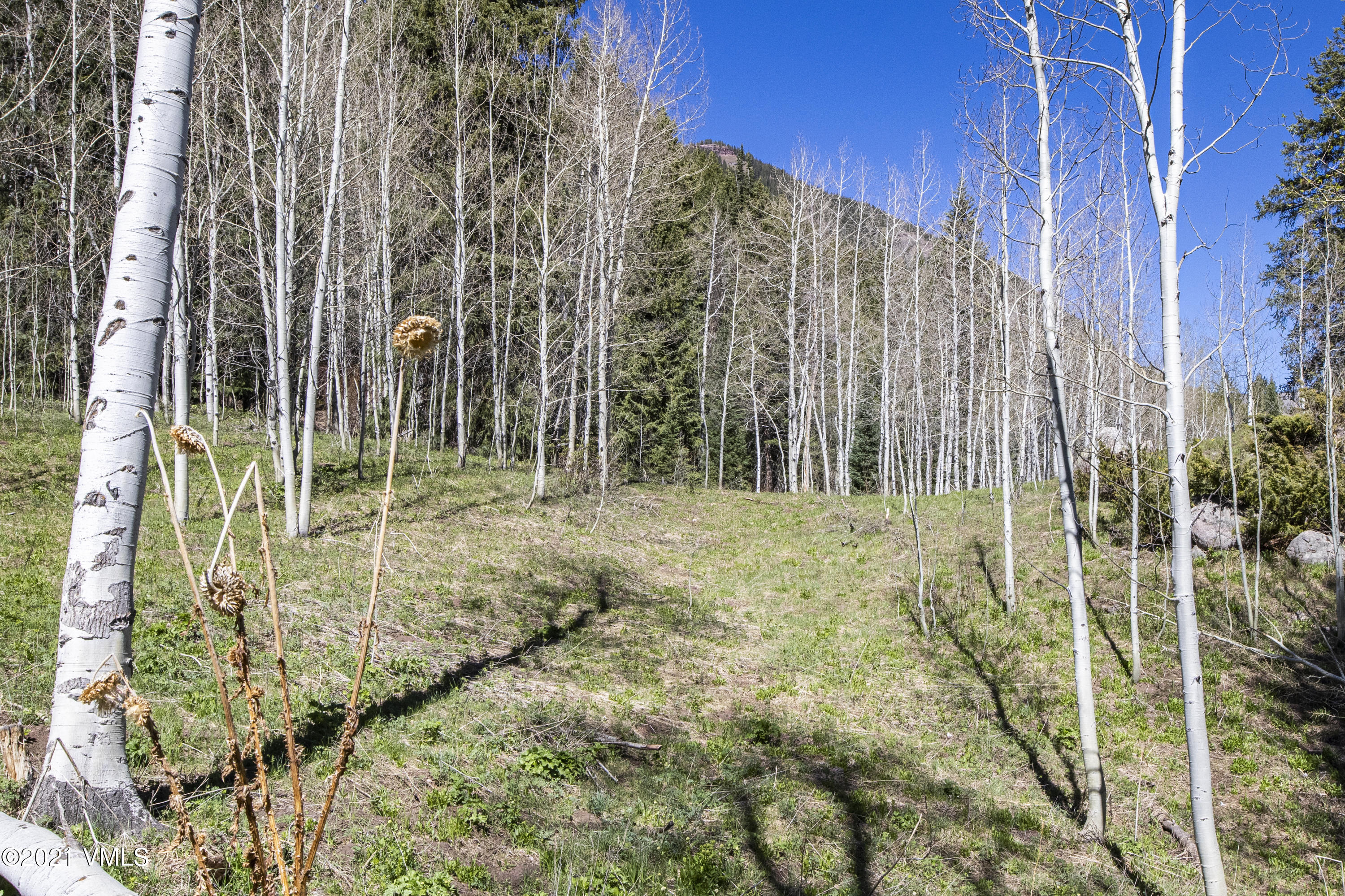 This is an incredibly prime redevelopment opportunity for someone to build on one of the best homesites in East Vail.  Backing up to national forest and with gorgeous views, including of Bald Mountain, this primary-secondary duplex site currently has a 3,000 square foot home with a separate 2-car garage and is being sold as a ''tear down'' given the condition and size.  This land is zoned for a primary-secondary duplex or a single family home.  You would need an architect to design and determine the exact square footage that can be built but between 9,000 and 10,000 square feet is a reasonable estimate based upon similar sized lots with this zoning.  Obviously something much smaller may be desirable depending upon the buyer and if it is a single family or a duplex.Enjoy visitors from your neighbors living on the White River National Forest: deer, elk and fox to name a few.  In the winter, there is a short walk to the Town of Vail free bus stop to take you into Vail Village.  If you are a backcountry enthusiast, you can ski right to your cul-du-sac via the East Vail chutes and come out at the water tower.  East Vail is magical in the summer and fall, with incredible hiking, biking, fly fishing, golf, and rafting.  Head into Vail Village for various festivals and events or to take in a concert at the Ford Amphitheater.  Enjoy dining and shopping with the family in Vail Village or even enjoy a nearby dinner at Heirloom Restaurant & Bar, located in the heart of East Vail at the Vail Racquet Club.  Get an affordable membership to the Vail Racquet Club for working out, swimming, hot tubs and tennis.  East Vail is a beautiful area and is well known for the big impact of it's steep mountains, waterfalls and the Gore Creek that winds through the area.  Bighorn Park is the neighborhood's meeting place with its playground, off-leash dog park, picnic tables, open field and pond. Bikers can begin their day by riding up Vail Pass, and hikers... have a choice of terrific hiking tr