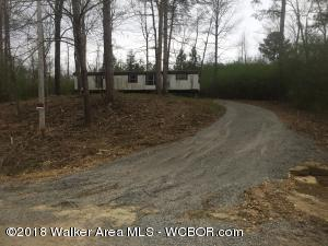 Starter home on 1 acre located across the road from Smith Lake. Boat launch available. Mobile home needs a little TLC. Give it your own touch!!!