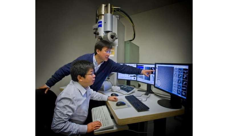 Revealing the fluctuations of flexible DNA in 3-D