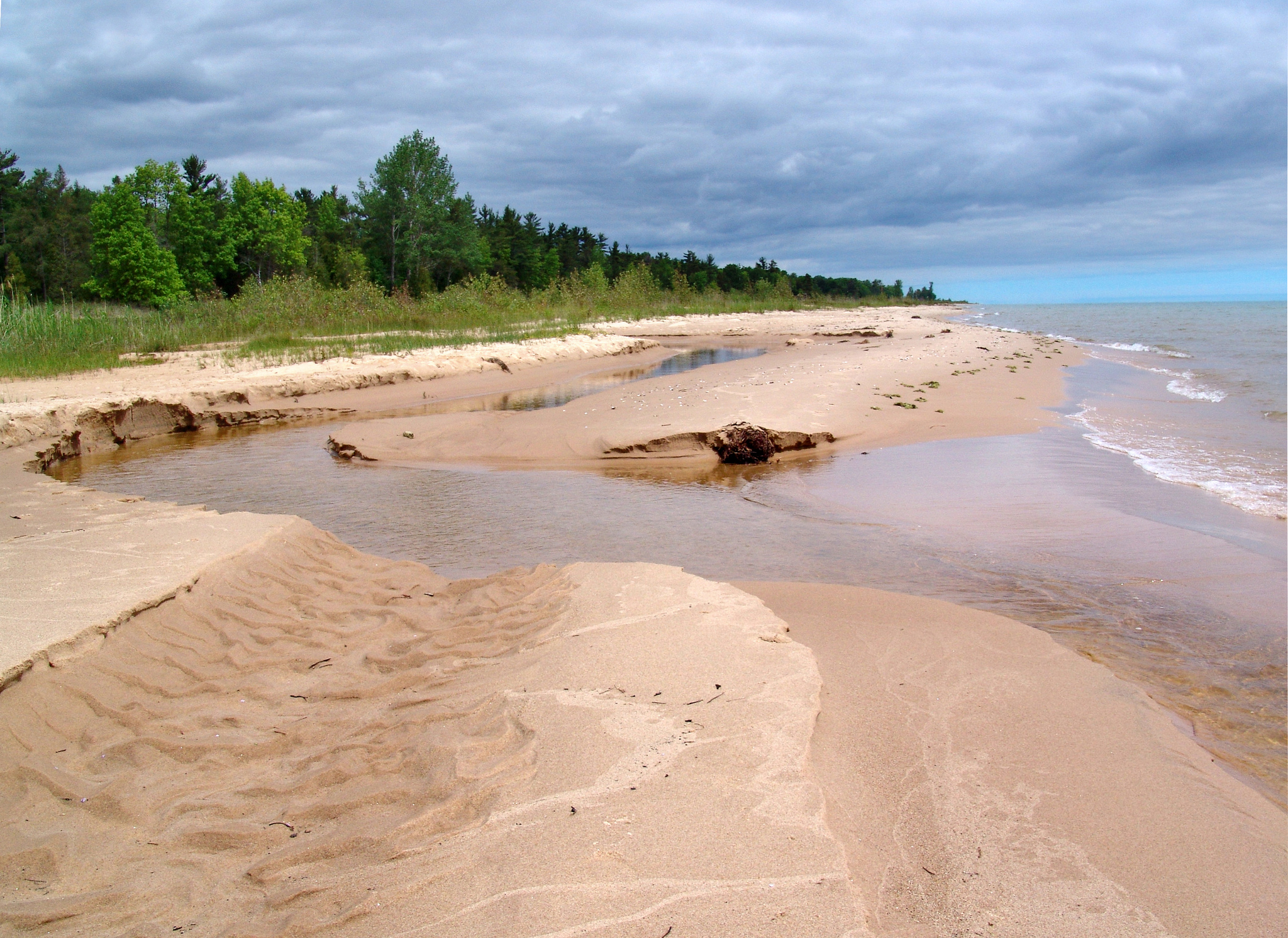 Limited Food May Be Significantly Changing Great Lakes