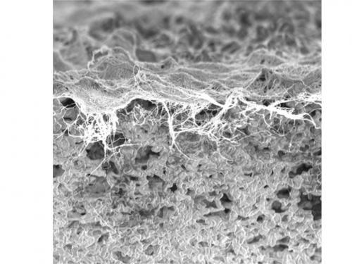 Plasma-treated nano filters help purify world water supply