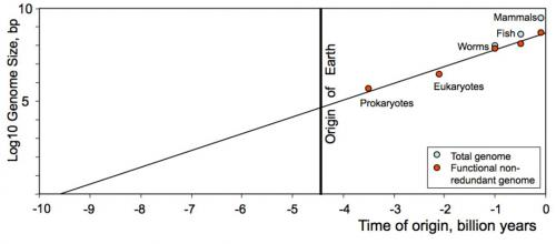 Plot of log of complexity of life by non redundant nucleotides against date of first occurrence in evolutionary record in billions of years. (Sharov, 2012).