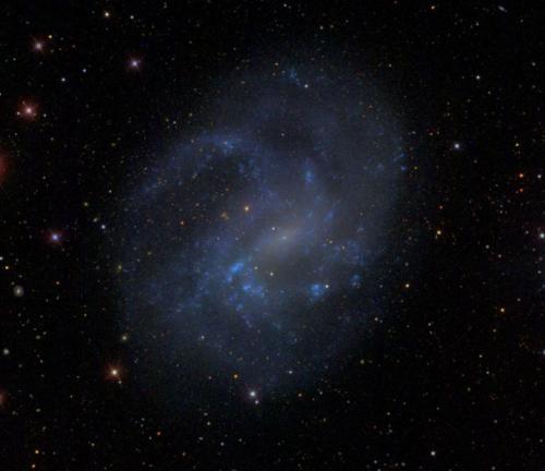 Dwarf galaxies give clues to origin of supermassive black holes