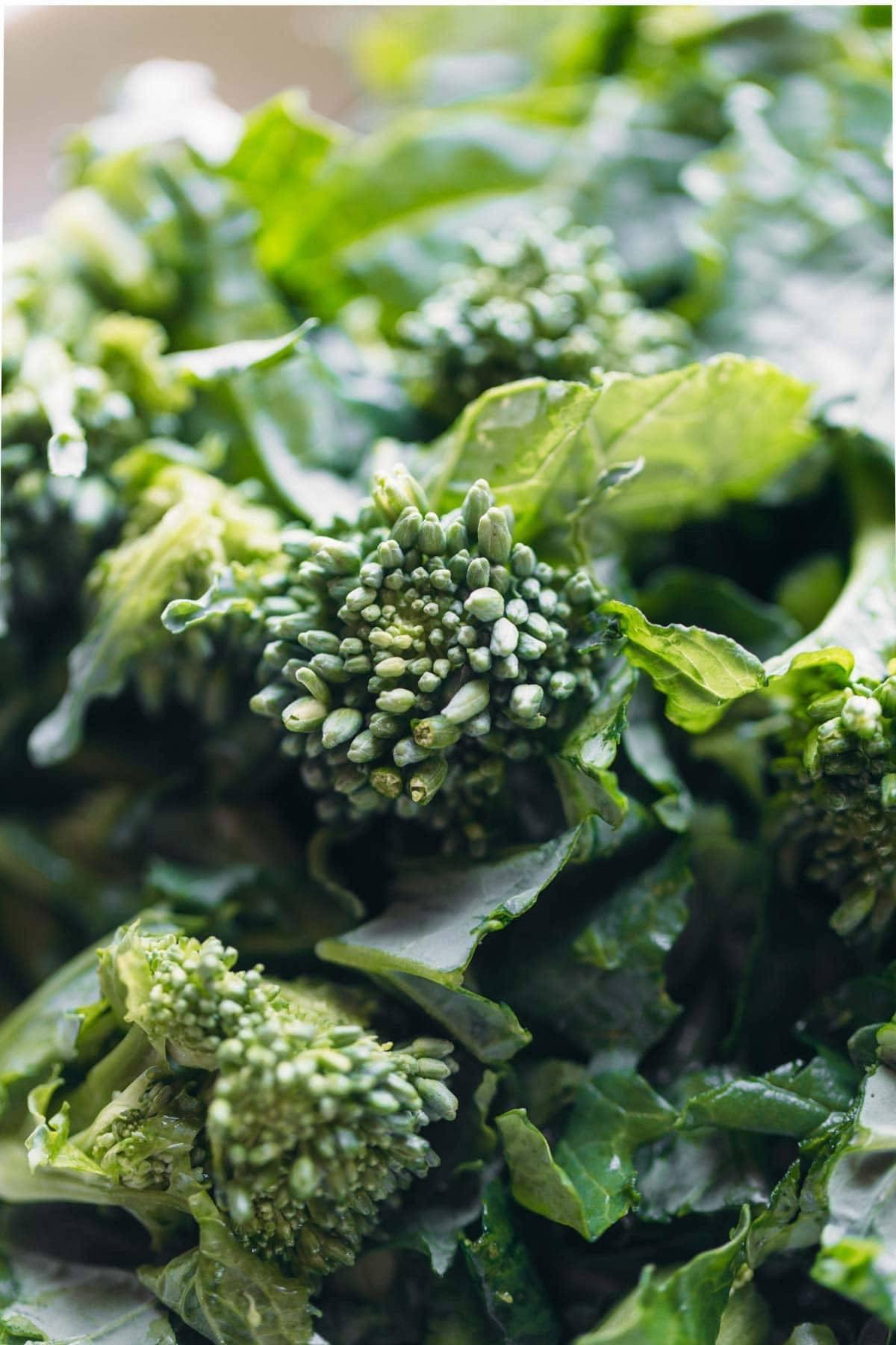 Broccoli Rabe for Sweet Potato Gnocchi | pinchofyum.com