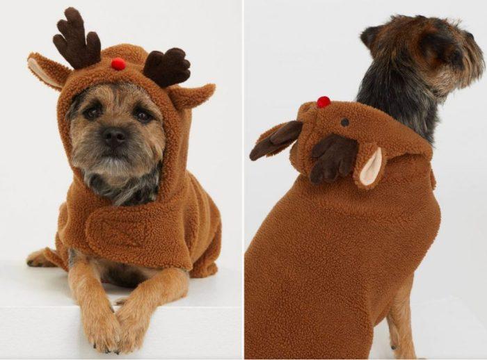 accesorios para perro , H&M, ropa para perro, accesorios perro, ropa mascotas, ropa para perro, abrigos para perro, difraz perro,