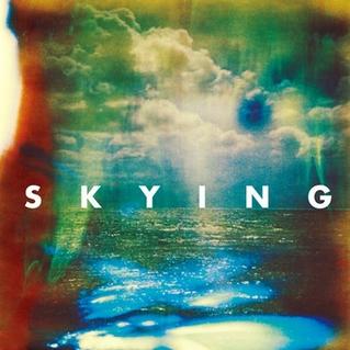 Resultado de imagem para the horrors skying album
