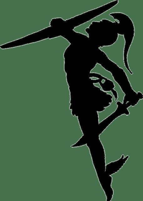 Warrior Roman Silhouette Free Vector Graphic On Pixabay