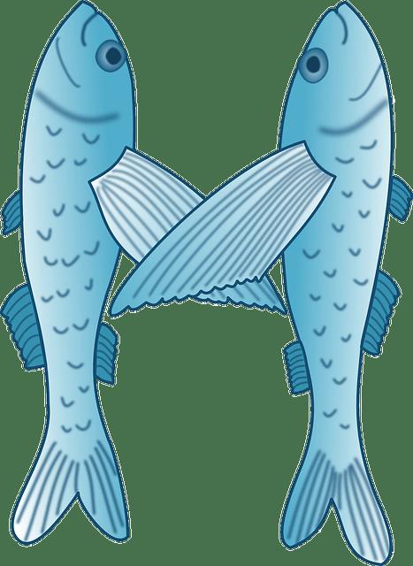 Free Vector Graphic Flying Fish Fish Exocoetidae Free