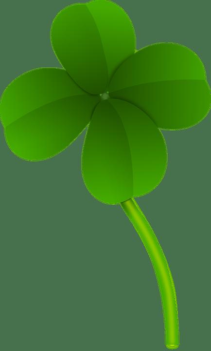 Клевер, Удача, Флора, Зеленый, Завод