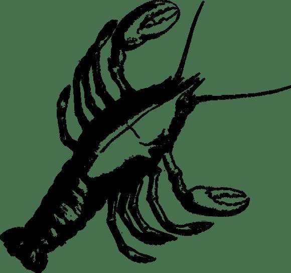 Lobster Kepiting Crustacea Udang Gambar Vektor Gratis Di Pixabay