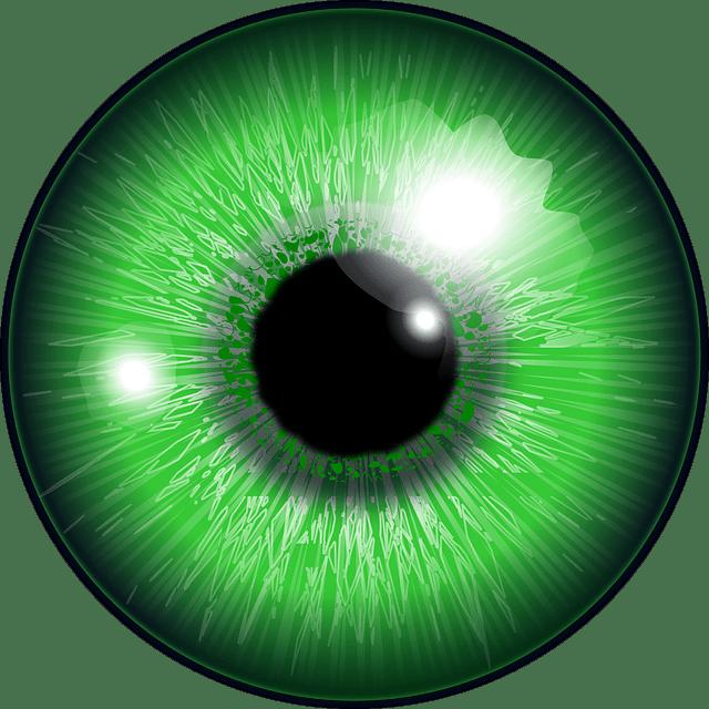 Eye Green Iris Free Vector Graphic On Pixabay