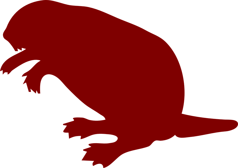 Free Vector Graphic Beaver Silhouette Drawing Art