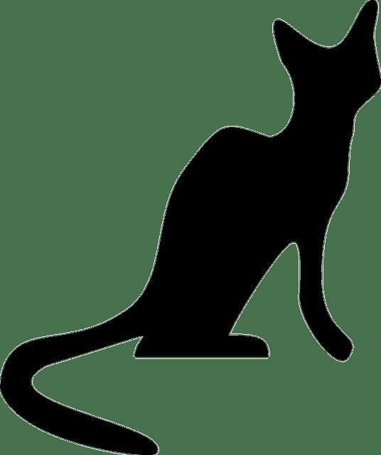 Cat Feline Kitten House Free Vector Graphic On Pixabay