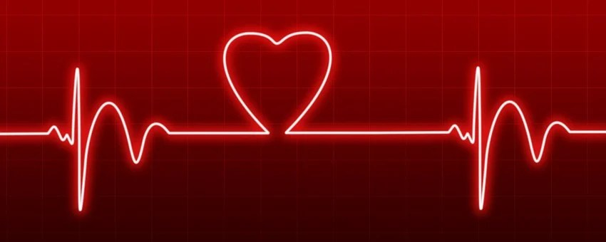 100 Free Heartbeat Medical Images Pixabay