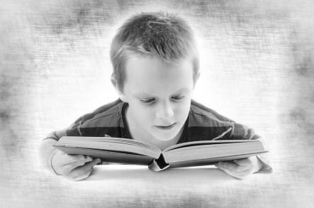 読み取り, 本, 少年, 子, 子ども, 学生, 思う, 10 代, テスト, 分離, 教育, 格付