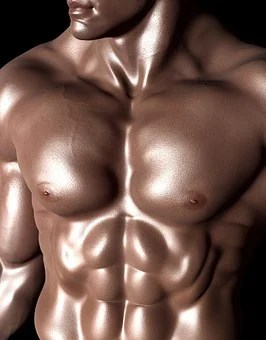 Torso of a six pack abs body builder