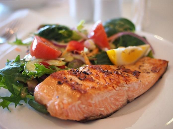 Salmón, plato, comida, comida, pescado, mariscos, plato