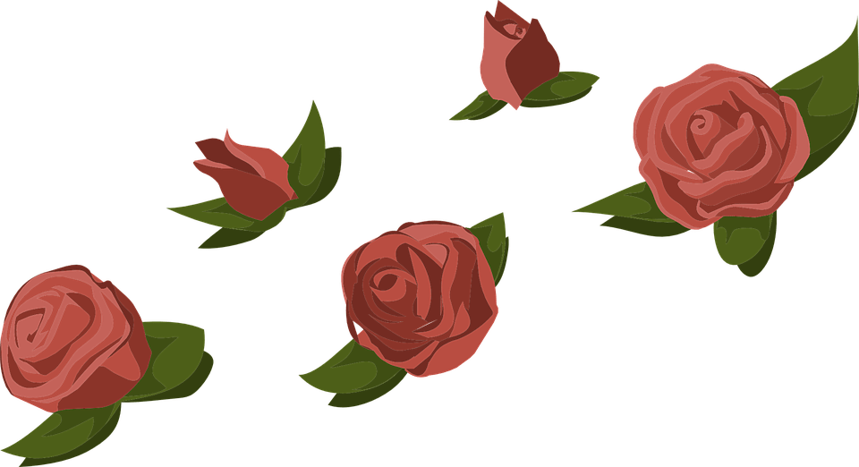 Free Vector Graphic Roses Red Flowers Buds Floral