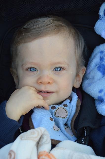 Free Photo Baby Boy Blue Child Cute Kid Free Image