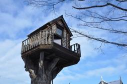 Japan, Hokkaido, In Tree House, Abnormal