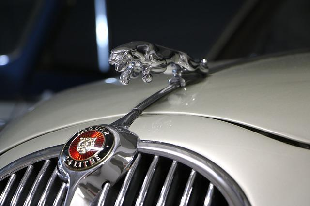 Free Photo Jaguar Car Emblem Sign Free Image On