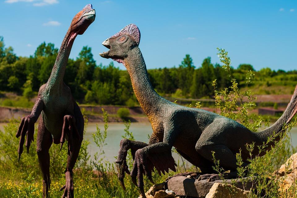 Dinosaur Gad Mammal Free Photo On Pixabay