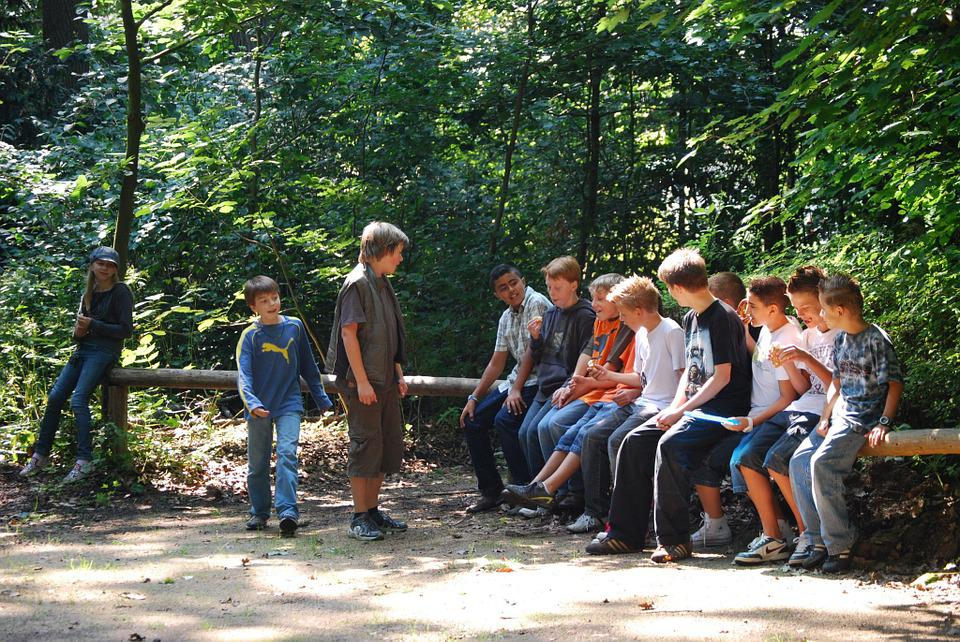 Teenager, Youth, Forest, Group, Young People, Guys