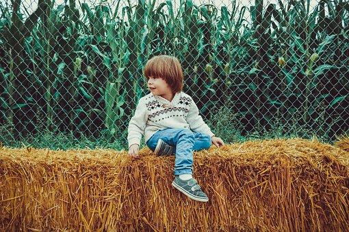 少年, 子, 若いです, 人, 子ども, 屋外, 乾草, トウモロコシ, 秋