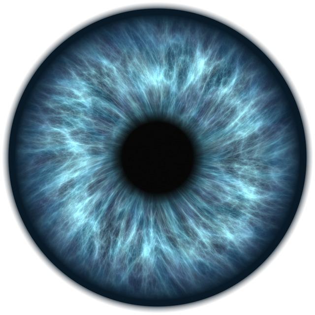Eye Iris Vision Free Image On Pixabay
