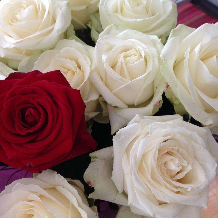 Bouquet De Fleurs Rouge Et Blanche