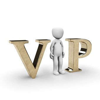 Vip, 重要です, 有名です, スター, ミュージシャン, 表示