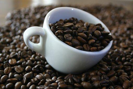 Kaffe, Bohne, Tasse, Guten Morgen