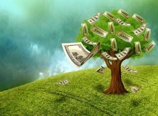 Cash, Money, Wealth, Assets, Money Plant