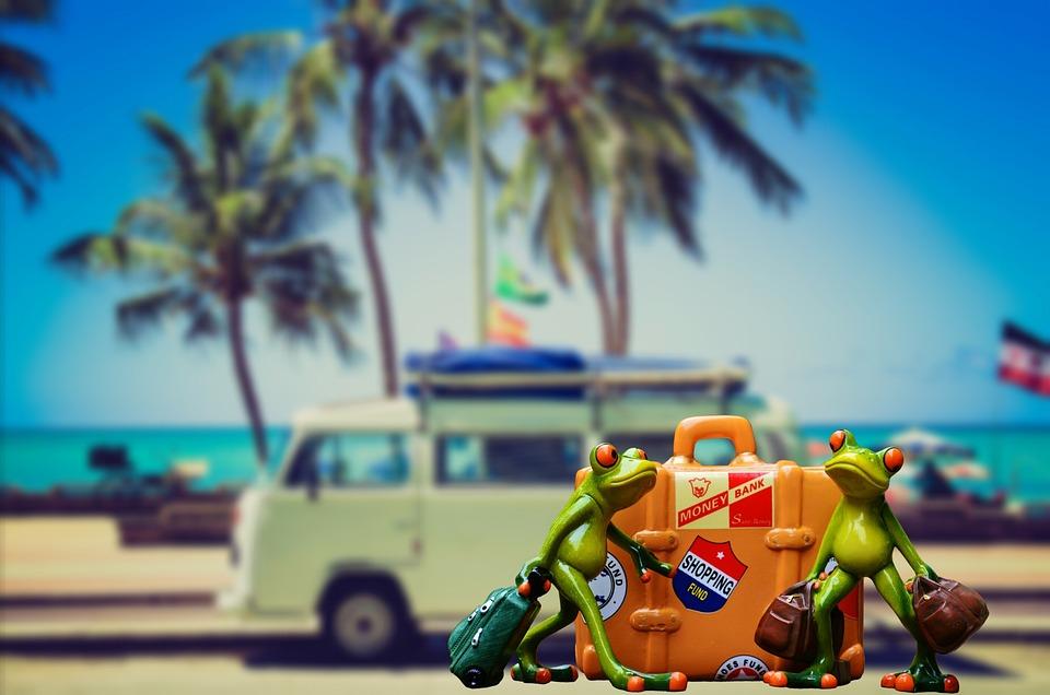Holiday Luggage Palm Trees Free Photo On Pixabay