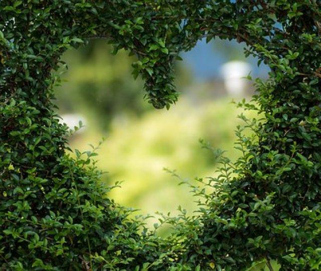Heart Herzchen Love Romance Luck