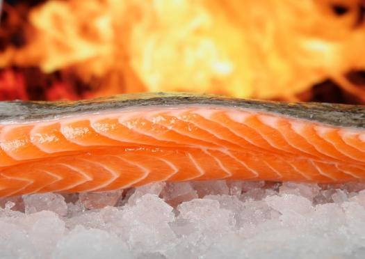 Salmone, Di Pesce, Cibo, Sul Ghiaccio, Alla Griglia
