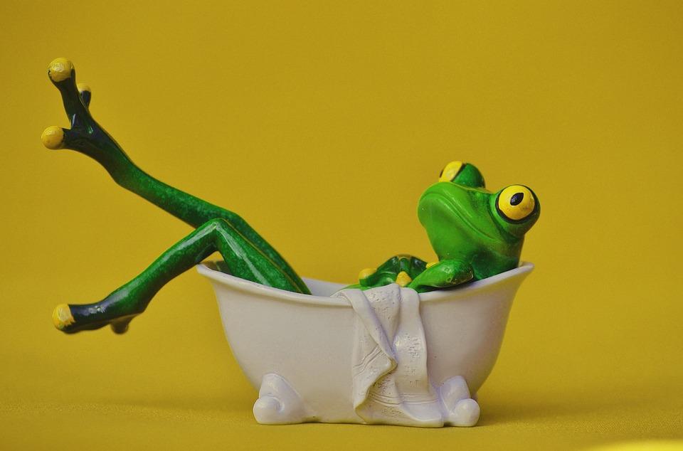 Frosch Badewanne Baden Kostenloses Foto Auf Pixabay