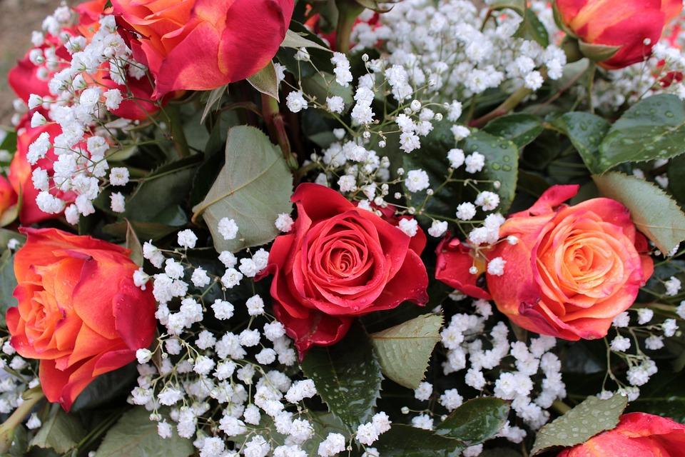Bouquet Roses Rouges Gypsophile Photo Gratuite Sur Pixabay