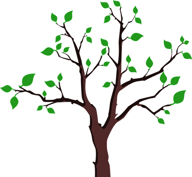 Branches Green Laurie 1 Free Vector Graphic On Pixabay