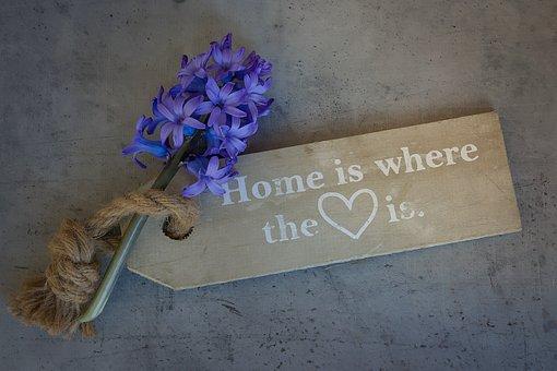 Hyacinth, Flower, Flowers, Blue