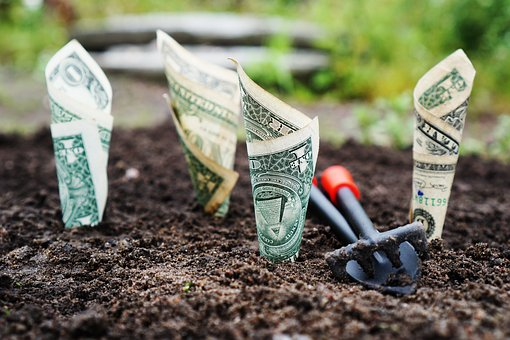 お金, 成長します, 金利, 保存, 投資します, 株式, 資金, 銀行