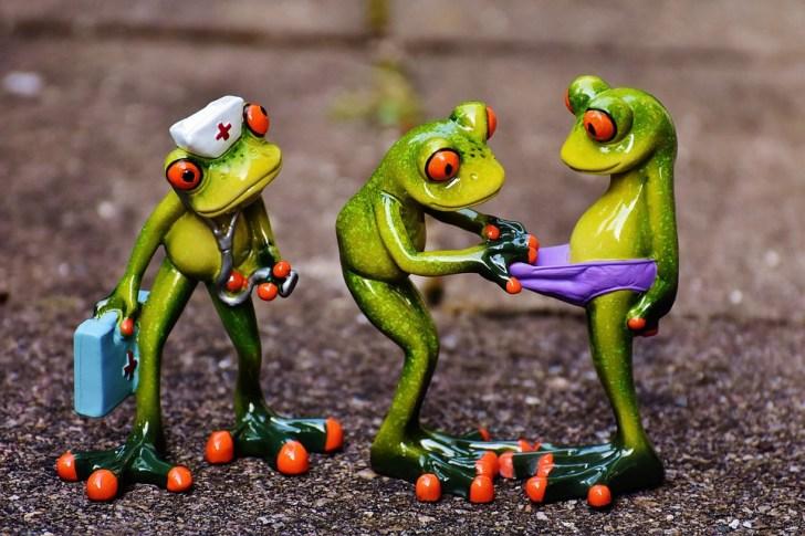 カエル, 緊急, 数字, おかしい, 好奇心が強い, 検索, オンコール ドクター, 看護師, かわいい