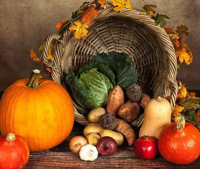 Pumpkin Vegetables Autumn