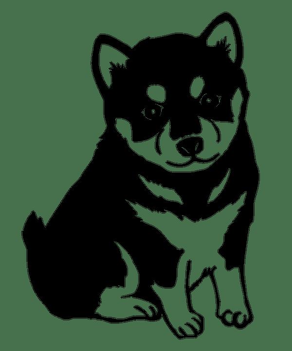 Free Illustration Shiba Inu Dog Puppy Cute Japan